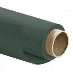 Fond Papier 2,72 x 11m - Vert bouteille - Pro Color Fonds Papier