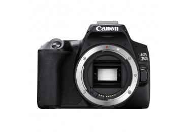 Canon Eos 250D - Reflex Numérique Reflex Canon