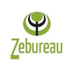 Studio Zebureau - VILLEURBANNA