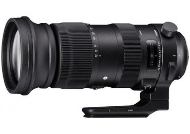SIGMA 60-600 mm f/4.5-6.3 DG OS HSM Sports - Monture Nikon Téléobjectif