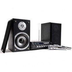 Karaoké Star 4 avec avec 2 enceintes et 2 Micros - LTC Audio Karaoké